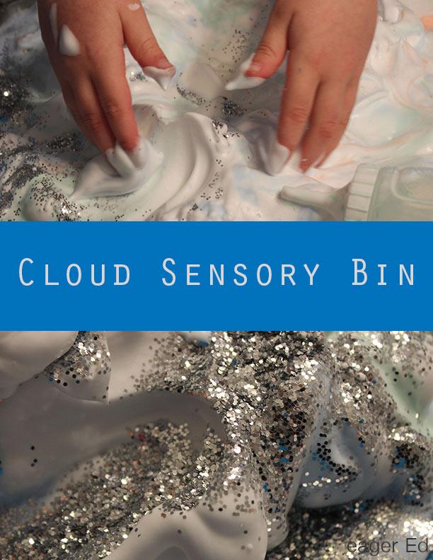 C_CloudSensoryBinBanner