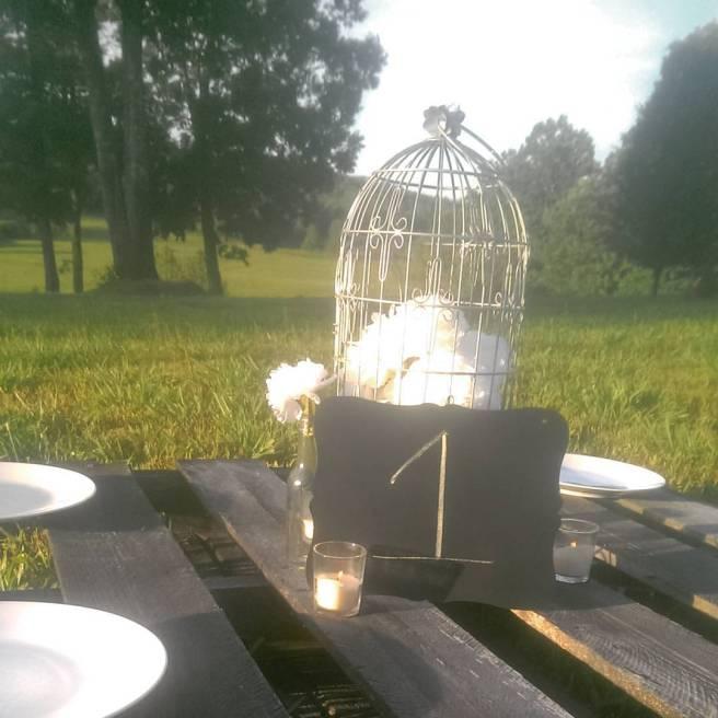 picnic view