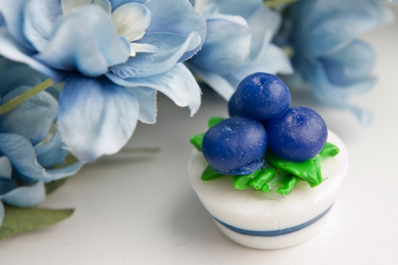 blueberry favors