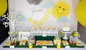 You Are My Sunshine Party Ideas